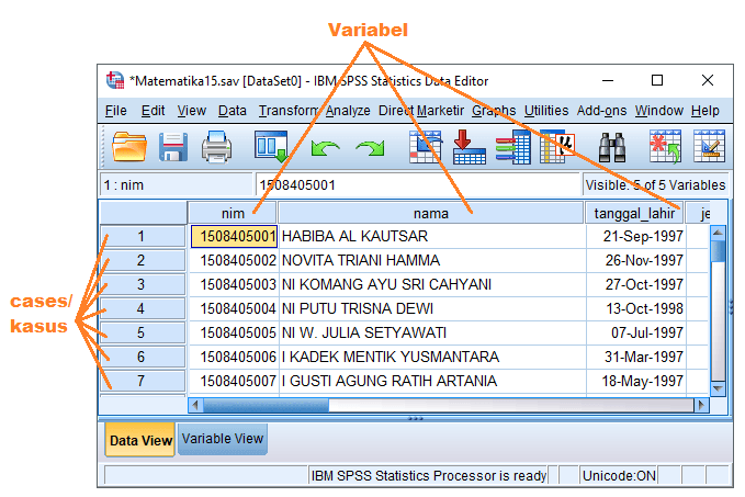 Data View pada SPSS