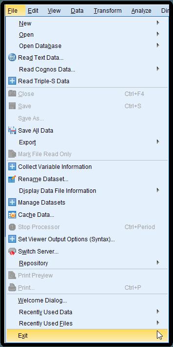 Menu file SPSS