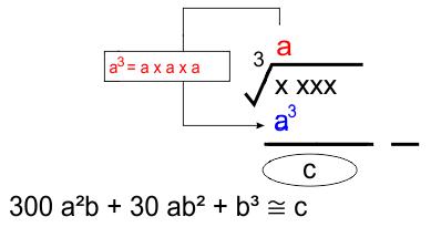 persamaan newton akar pangkat 3